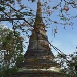 Wat U Mong, chedi