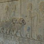 Apadana, escaliers Est, dons des délégations, Assyriens