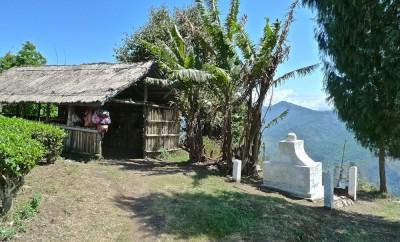 Vallée de la Tista : hutte ancienne et petit tombeau au milieu des plantations de thé