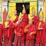"""Les moines """"Bonnets jaunes"""" du monastère"""