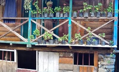 lac khecheopalri vieille maison avec terrasse extérieure 1.4.15