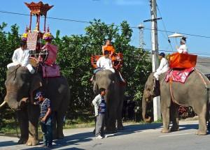 Les trois éléphants de parade