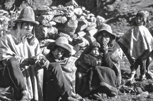 Q'ero Totorani, famille Sierra Chura